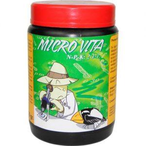 microbita buena